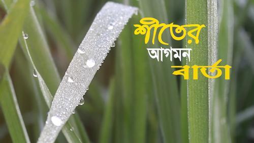 ঠাকুরগাঁওয়ে শীতের আগাম বার্তা