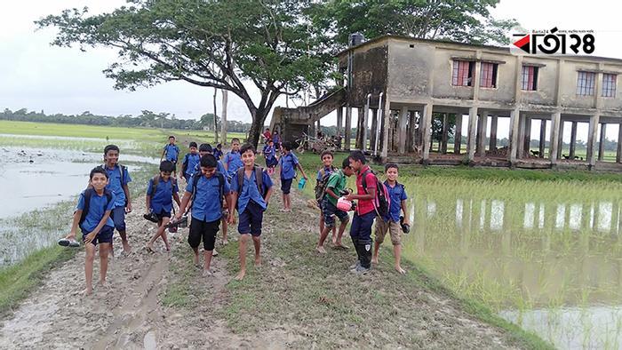 স্কুলের রাস্তায় হাঁটু সমান কাদা, শিক্ষার্থীদের ভোগান্তি
