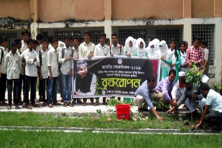 লক্ষ্মীপুর সরকারি কলেজ প্রাঙ্গণে বৃক্ষরোপণ অনুষ্ঠিত, ছবি: সংগৃহীত