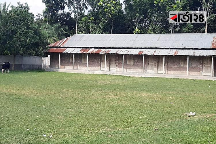 বাঘার আমোদপুর নিম্ন মাধ্যমিক বিদ্যালয়, ছবি: বার্তা২৪