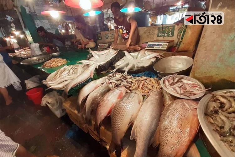 বাজারে সামুদ্রিক মাছের সরবরাহ কম, ছবি: বার্তাটোয়েন্টিফোর.কম
