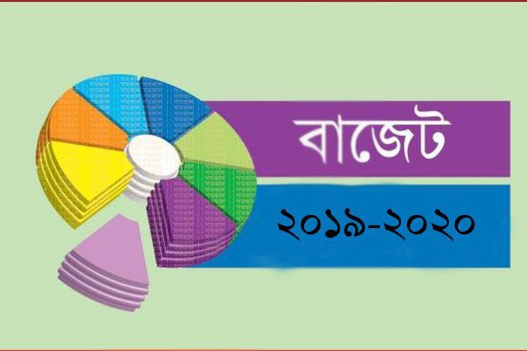 আগামী বাজেটে ভর্তুকির পরিমাণ বাড়বে/ ছবি: সংগৃহীত