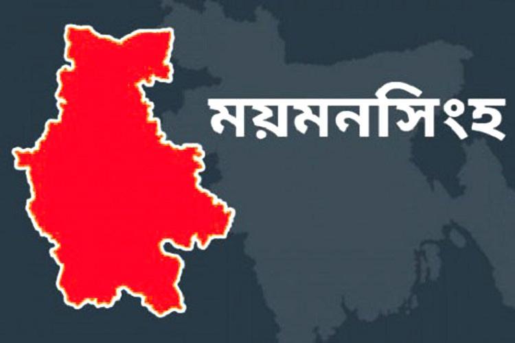 ময়মনসিংহ জেলার মানচিত্র, ছবি: সংগৃহীত