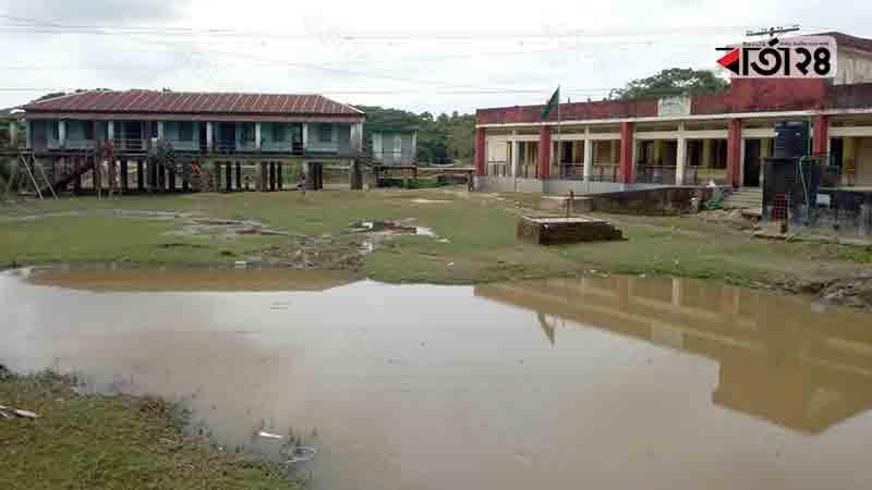 বাহাদুরকান্দা সরকারি প্রাথমিক বিদ্যালয়। ছবি: বার্তাটোয়েন্টিফোর.কম