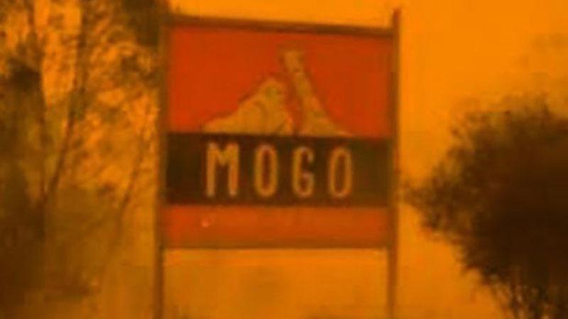 দাবানলের মুখে মোগো চিড়িয়াখানা, ছবি: সংগৃহীত