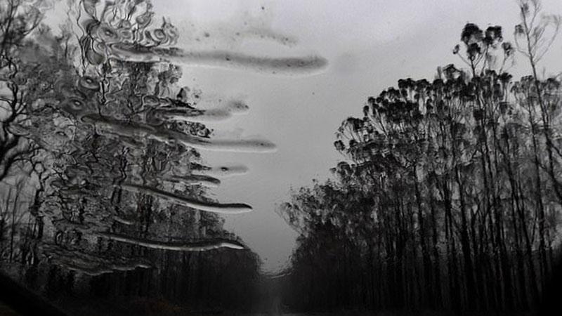 অস্ট্রেলিয়ায় বৃষ্টি, ছবি: ডেইলি মেইল