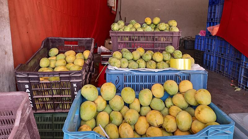 রাজশাহীর বাজারে গোপালভোগ