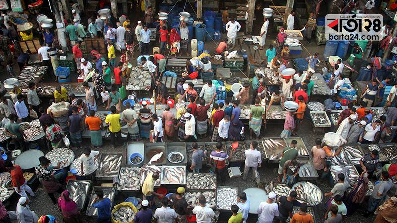যাত্রাবাড়ী মাছের বাজার/ছবি: মেহেদী হাসান রানা